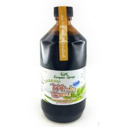 GK syrup mint 300ml
