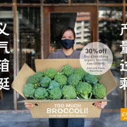 organic broccoli box